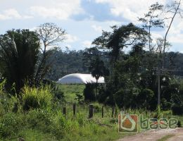 Armazenamento Florestal Pará